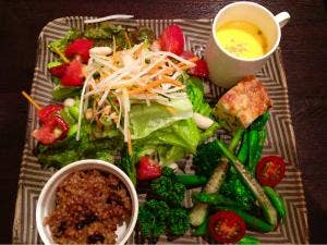 多酒菜菜_3551897